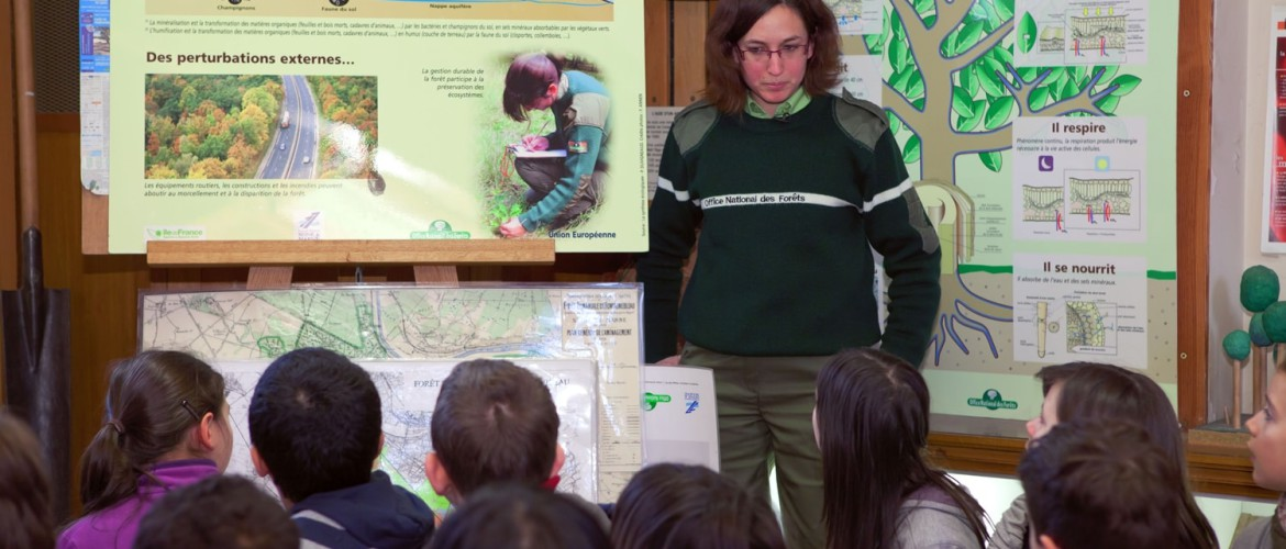 Young students and femal forester in classroom