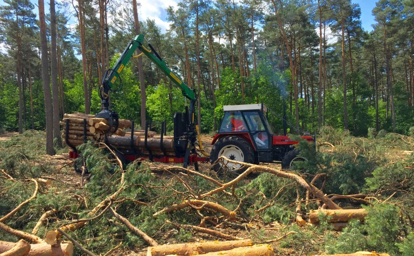 Joint messages from forest and agriculture sectors to feed ongoing Renewable Energy Directive trilogue negotiations