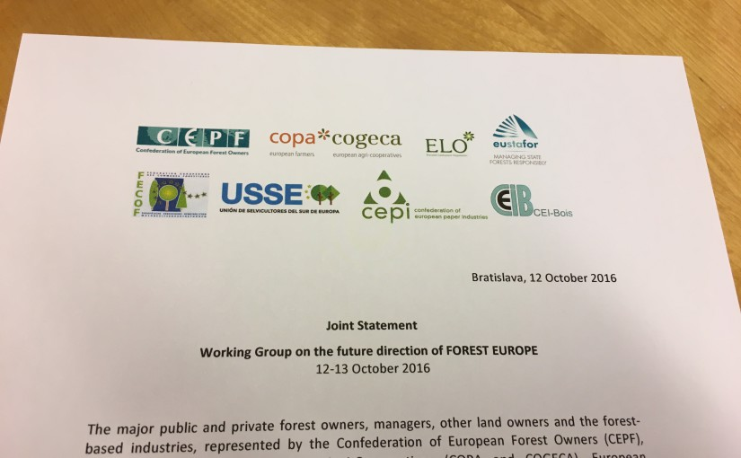 Key elements to be included in the review of the FOREST EUROPE process to ensure Sustainable Forest Management