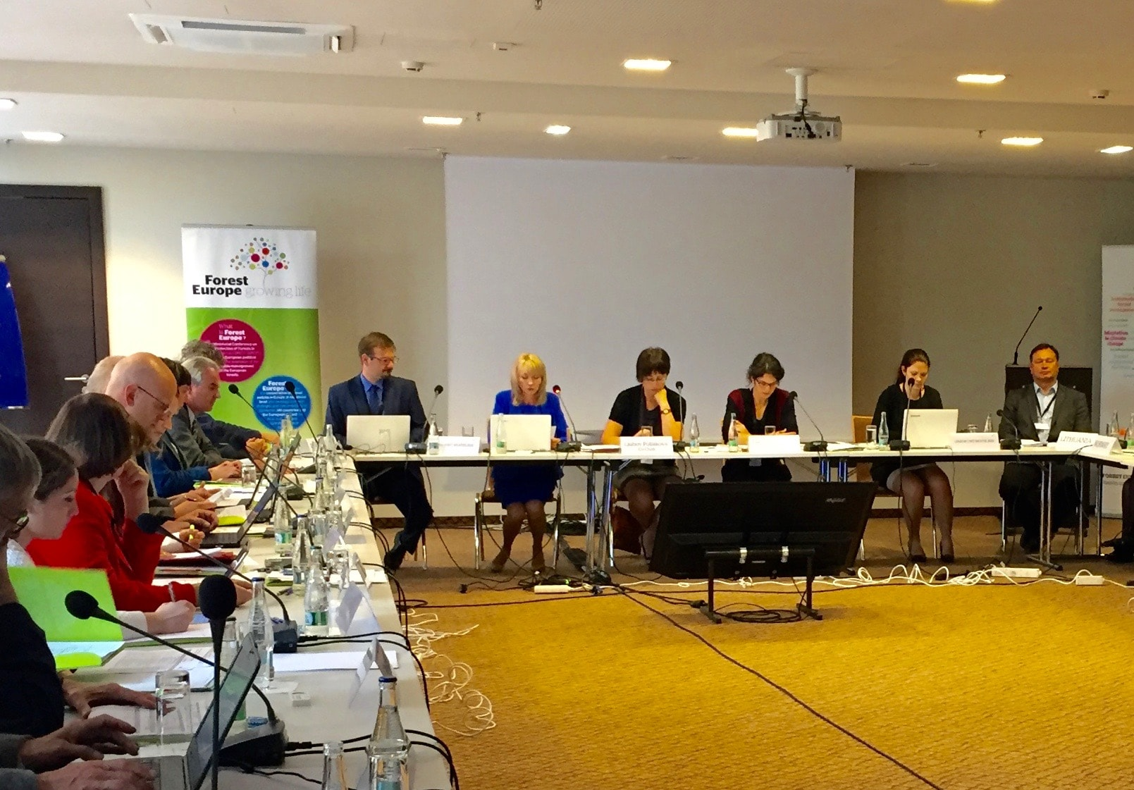 WG on the future directions of Foret Europe (Bratislava 2016)