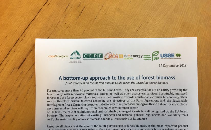 A bottom-up approach to the use of forest biomass