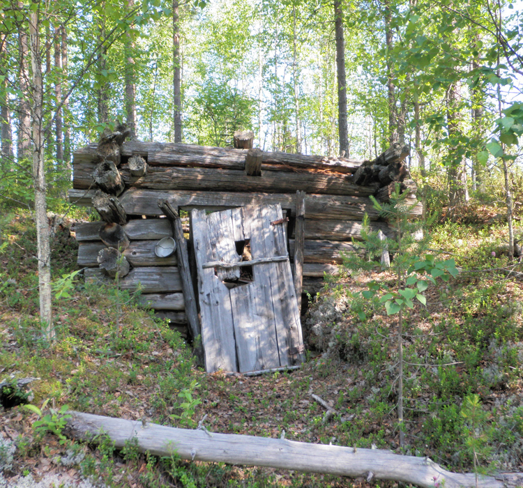 "The remains of a tar burners' hut in Nurmes. The building, partially dug underground, dates back to the 1950s and the text ""Hikipesä"" (Sweat Den) is engraved above the door. Photo: Ville Laurila/Metsähallitus."