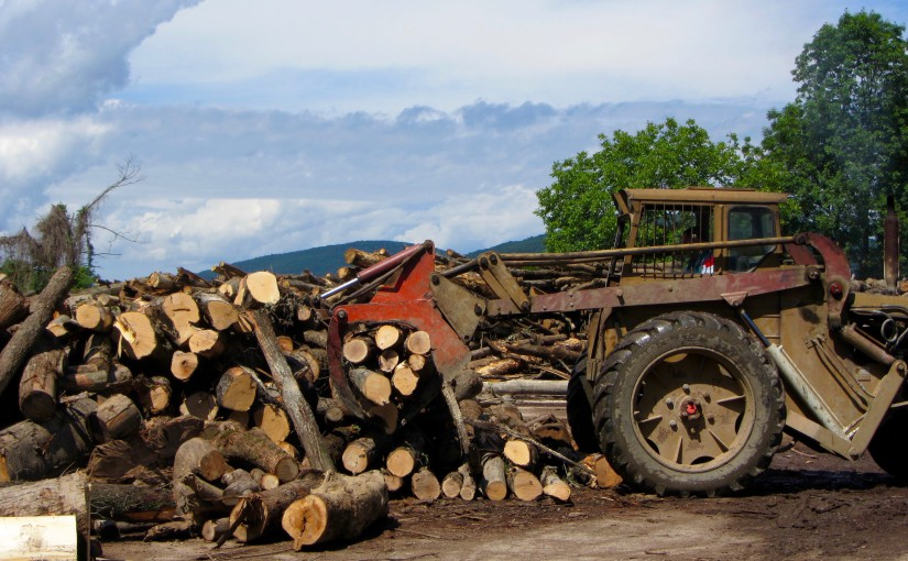 Commission likely to take a decision on the issue of the sustainability of solid biomass by 30 November 2016. EUSTAFOR argues that sustainably managed forests are a proven source of sustainable biomass for bioenergy