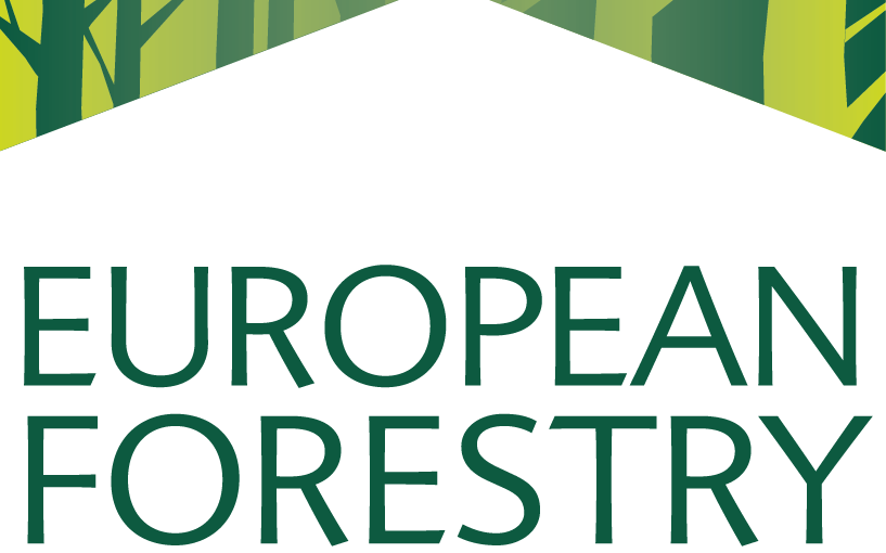 The European Forestry House Celebrates 10 Years of Existence