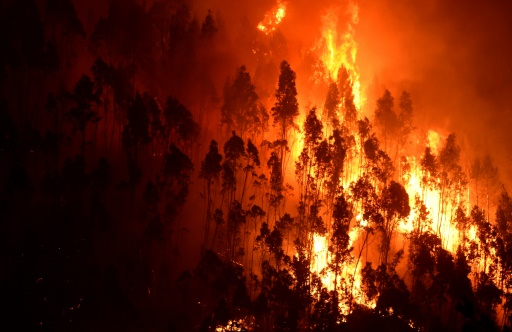 How to deal with MegaFires in Europe