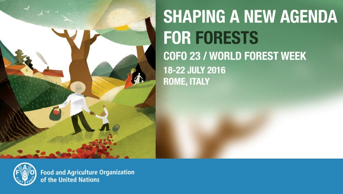 Joint Press Release: World Forest Week 2016